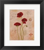 Framed Poppy Fresco II