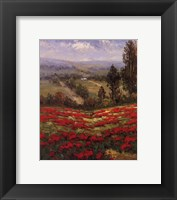 Framed Poppy Vista II