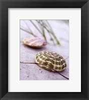 Sandy Beach I Framed Print