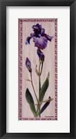 Framed Iris Panel I