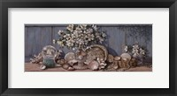 Seashell Collection II Framed Print