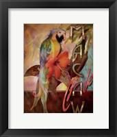 Framed Macaw Cafe