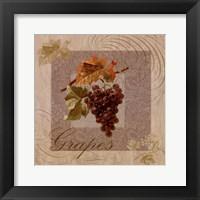 Fruits Blossoms I Framed Print