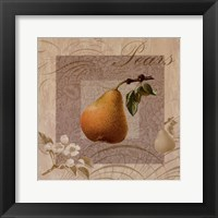 Fruits Blossoms III Framed Print