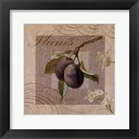 Fruits Blossoms IV Framed Print