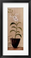 Framed Asian Orchid I
