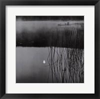 Framed Sunken Moon, Salt Spring Island