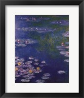 Framed Waterlilies at Giverny