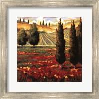 Framed Tuscany In Bloom III