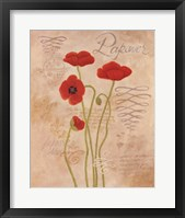 Framed Poppy Fresco I