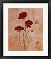 Framed Poppy Fresco II
