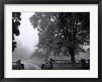 Misty II Framed Print