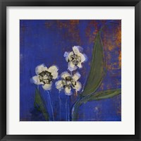 Framed Orchid Study I