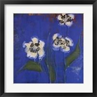 Orchid Study II Framed Print