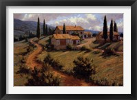 Italian Cypress Framed Print