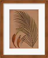 Framed Palm Frond IV
