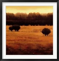 Framed Woodland's Edge