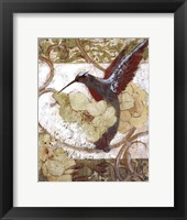 Framed Humming Bird II