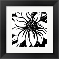 Framed Miniature Botanical Sketch V