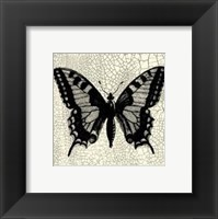 Framed Classical Butterfly I