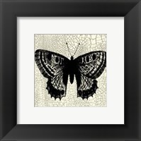Framed Classical Butterfly II