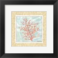 Framed Ocean Coral