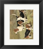 Framed Basset Hounds