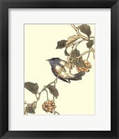 Framed Oriental Bird On Branch III