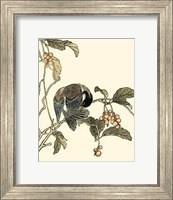 Framed Oriental Bird On Branch IV