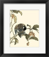 Framed Oriental Bird On Branch IV