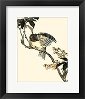 Framed Oriental Bird On Branch V