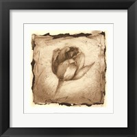 Framed Floral Impression I