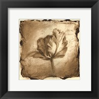 Framed Floral Impression V