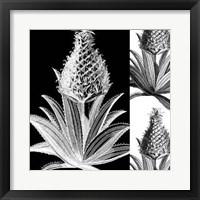 Framed Pop Pineapple I
