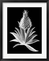 Framed Pineapple Noir I