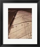 Windward Sail I Framed Print