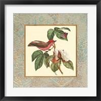 Framed Bel Air Songbirds I