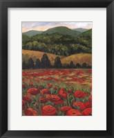 Framed Blue Ridge Poppies
