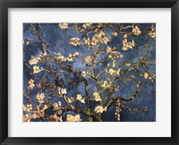 Framed Blossoming Almond Tree, Saint-Remy, c.1890
