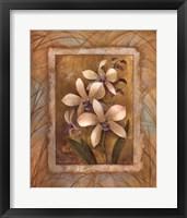Framed Illuminated Orchid I