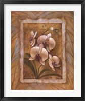 Framed Illuminated Orchid II