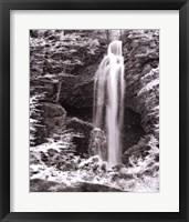 Framed Nature's Jewel II