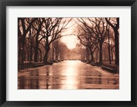 Framed Rainy Day - Central Park