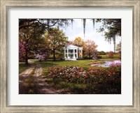Framed Wild Rose Manor