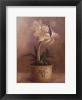 Framed Olivia's Flowers IV