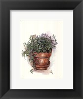 Framed Potted Herbs-Oregano