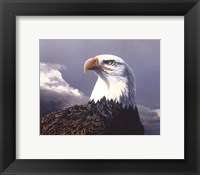 Framed American Portrait