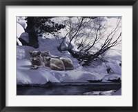 Framed Good Place-Wolves