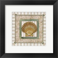 Framed Scallop