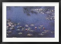 Framed Waterlillies